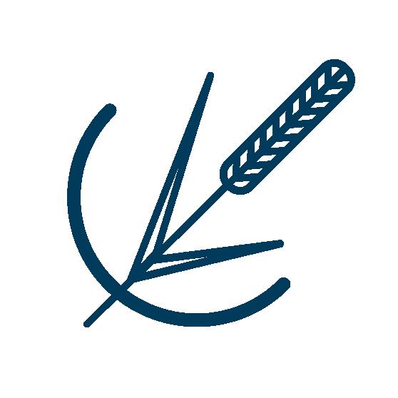 Nurmikasvit