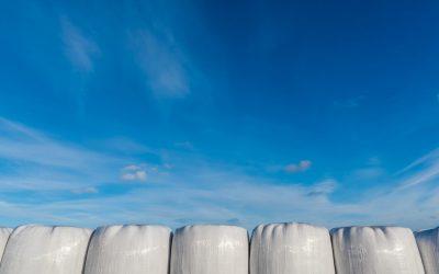 Laadukas nurmirehu parantaa tuotosta ja pienentää maidon ja lihan päästöjä